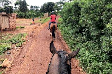 Horseback Safaris in Jinja along the Nile