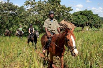 The Nile Horseback Safari